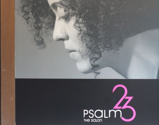 Beauty Salon Poster - profile of a woman with full hair. Text: Psalm 23. The Salon
