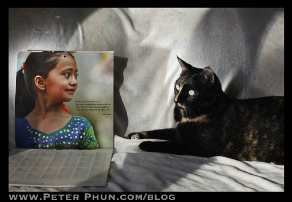 Photo of Karuna Vihar Calendar propped on a couch with a cat beside it