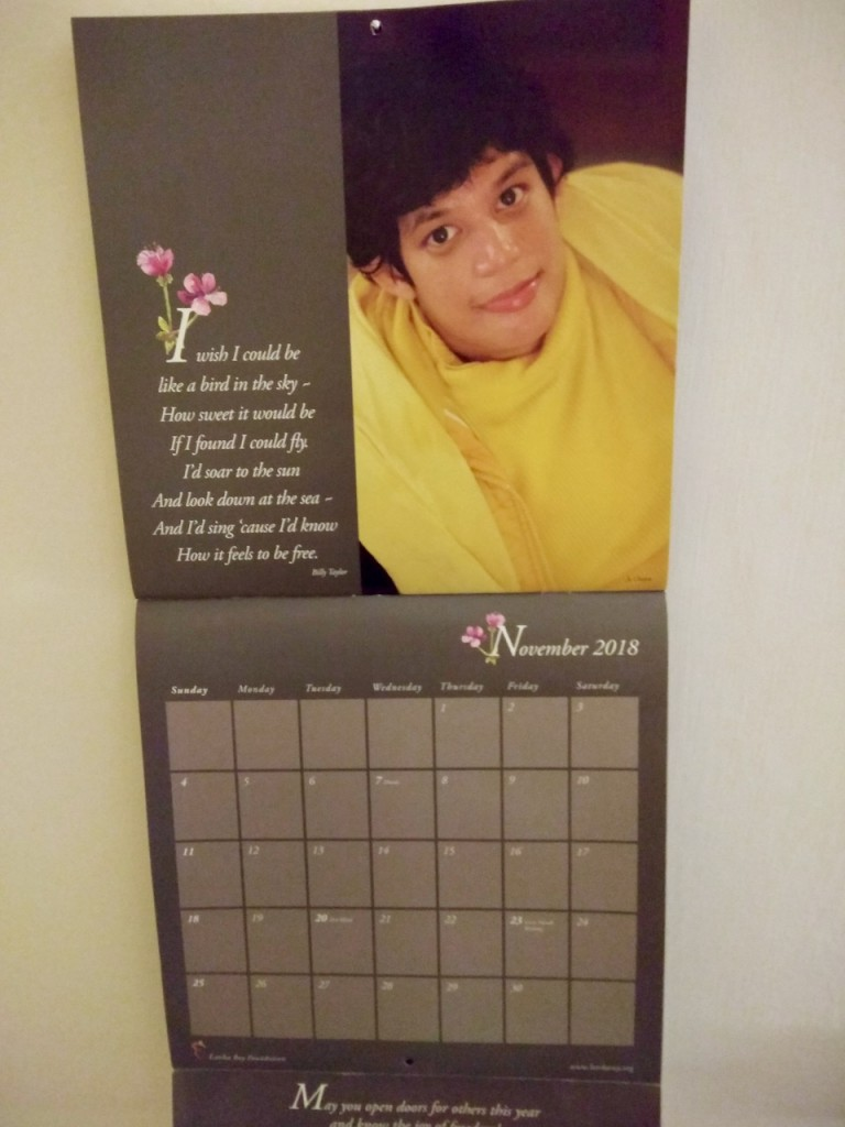 Photo of November page of a calendar - picture is of a girl in bright yellow looking up expectantly