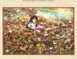Calendar Essay 2005